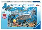 Caribbean Smile 60 PC Puzzle Cover Image