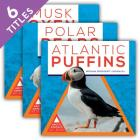 Arctic Animals at Risk (Set) Cover Image