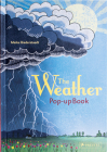 Weather: Pop-up Book Cover Image