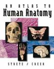 An Atlas to Human Anatomy Cover Image