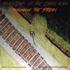 Adventures of the Cabin Kids: Surviving the Stream Cover Image