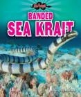 Banded Sea Krait Cover Image