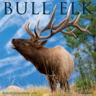 Bull Elk 2021 Wall Calendar Cover Image