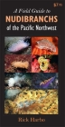 A Field Guide to Nudibranchs of the Pacific Northwest Cover Image