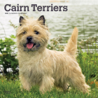 Cairn Terriers 2021 Square Cover Image