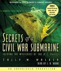 Secrets of a Civil War Submarine Cover Image