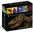 American Museum of Natural History Card Deck: 100 Treasures from the Hall of Science and World Culture Cover Image