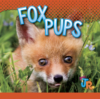 Fox Pups (Baby Animals) Cover Image