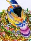 鸟类成年人的着色书: 奥杜邦鸟类涂色书创 Cover Image
