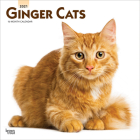 Ginger Cats 2021 Square Cover Image