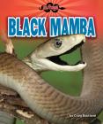 Black Mamba Cover Image