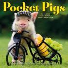 Pocket Pigs Wall Calendar 2020 Cover Image