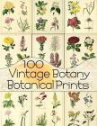 100 Vintage Botany Botanical Prints Cover Image