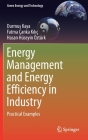 Energy Management and Energy Efficiency in Industry: Practical Examples (Green Energy and Technology) Cover Image