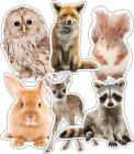 Woodland Whimsy Animals Cut-Outs Cover Image
