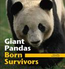 Giant Pandas: Born Survivors Cover Image