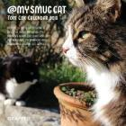 My Smug Cat 2018 Calendar Cover Image