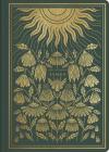 ESV Illuminated Scripture Journal: James Cover Image