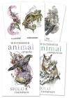 Winterseer Animal Oracle Cover Image