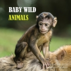 Baby Wild Animals Calendar 2020: 16 Month Calendar Cover Image