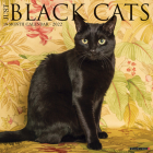 Just Black Cats 2022 Wall Calendar Cover Image