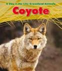 Coyote. Louise Spilsbury (Day in the Life. Grassland Animals) Cover Image