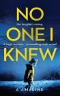 No One I Knew Cover Image