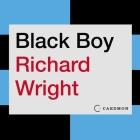 Black Boy Lib/E Cover Image