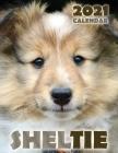 Sheltie 2021 Calendar Cover Image