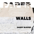 Paper: Walls: Vulnerability and Resilience of Urban Surfaces Cover Image