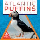 Atlantic Puffins Cover Image