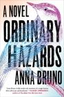 Ordinary Hazards: A Novel Cover Image