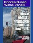 Kiev e Oblast: grattacieli come a New York: Guida turistica illustrata Cover Image