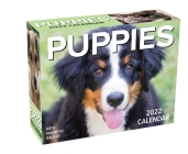 Puppies 2022 Mini Day-to-Day Calendar Cover Image