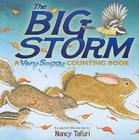 The Big Storm: A Very Soggy Counting Book Cover Image
