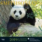 Smithsonian National Zoo 2019 Square Hachette Cover Image