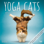 Yoga Cats 2021 Square Cover Image