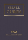 Small Cures Cover Image