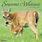 2016 Seasons of the Whitetail Wall Calendar Cover Image