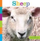 Seedlings: Sheep Cover Image