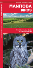 Manitoba Birds: An Introduction to Familiar Species Cover Image