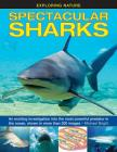 Spectacular Sharks: An Exciting Investigation Into the Most Powerful Predator in the Ocean, Shown in More Than 200 Images (Exploring Nature (Armadillo)) Cover Image