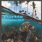 Turtle calendar 2021 Cover Image