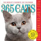 365 Cats Page-A-Day Calendar 2020 Cover Image