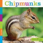 Chipmunks (Seedlings: Backyard Animals) Cover Image