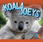 Koala Joeys (Baby Animals) Cover Image