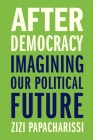 After Democracy: Imagining Our Political Future Cover Image