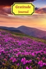 Gratitude Iournal for teens and adults Cover Image