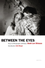 David Levi Strauss: Between the Eyes (Signed Edition): Essays on Photography and Politics Cover Image