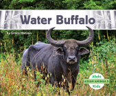 Water Buffalo Cover Image